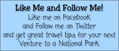 Like Me and Follow Me!
